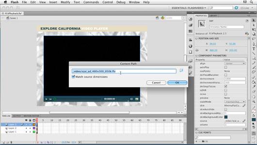 Adobe Flash CS6 Crack